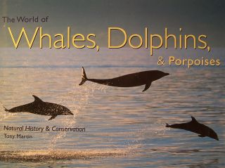 The World of Whales, Dolphins & Porpoises. Tony Martin